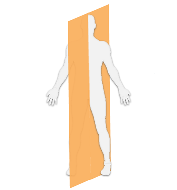 Exercise Takes Place in Sagittal Plane